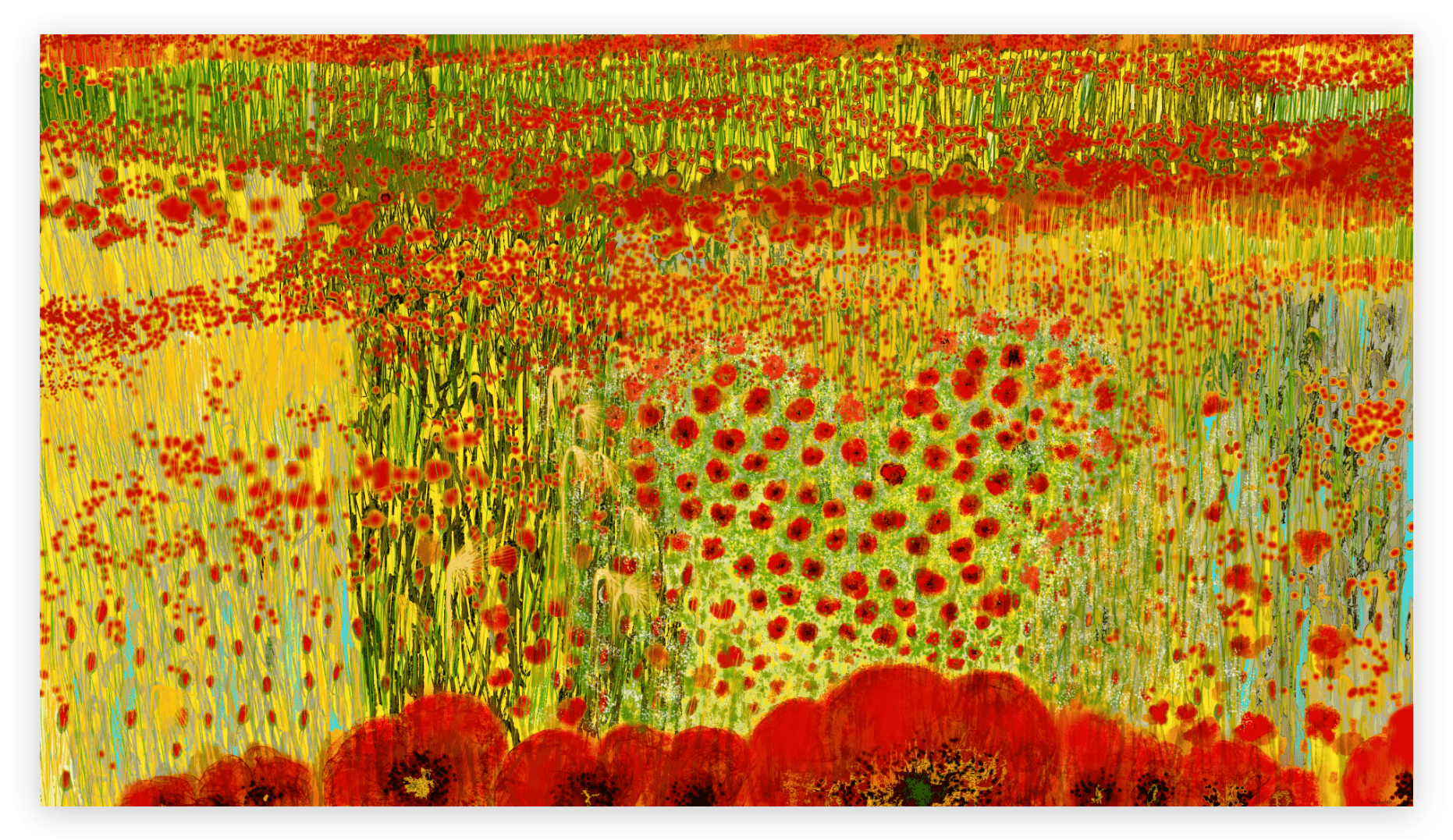 Dazzling art print inspired by the vivid poppies in Occitanie, France. artist: Anne Turlais - Limited edition of 300. Floral Art print in limited edition on Dibond.