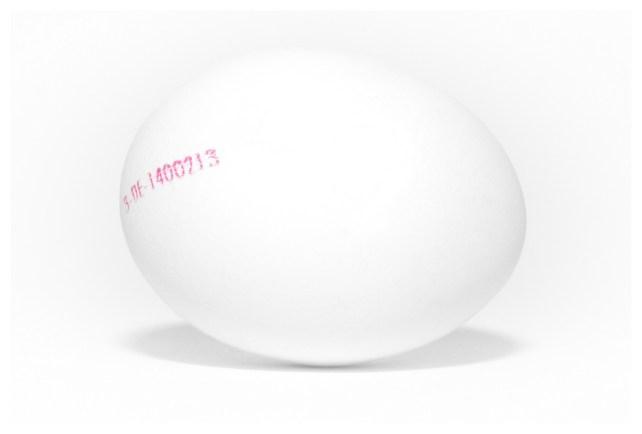 das weiße Ei