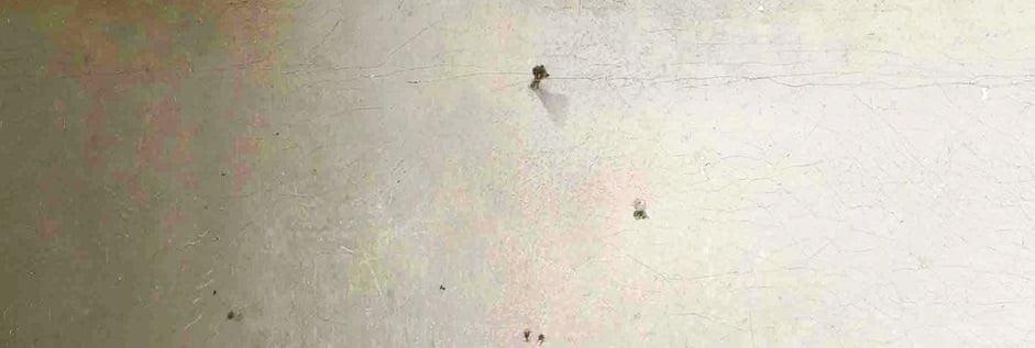 Le clou de la toile de Vermeer Galerie 21
