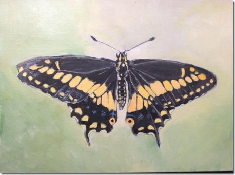 Papillon-peinture_thumb.jpg