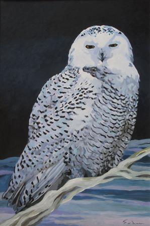 Jacques GODIN - 2020 Harfang, acrylique sur papier, 40 x 60 cm