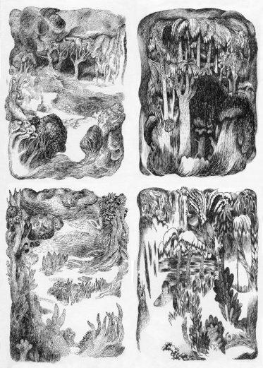 Delphine Chauvet - Petites Forêts