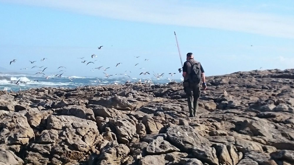 Experiencias - Galicia de Pesca - Lubina
