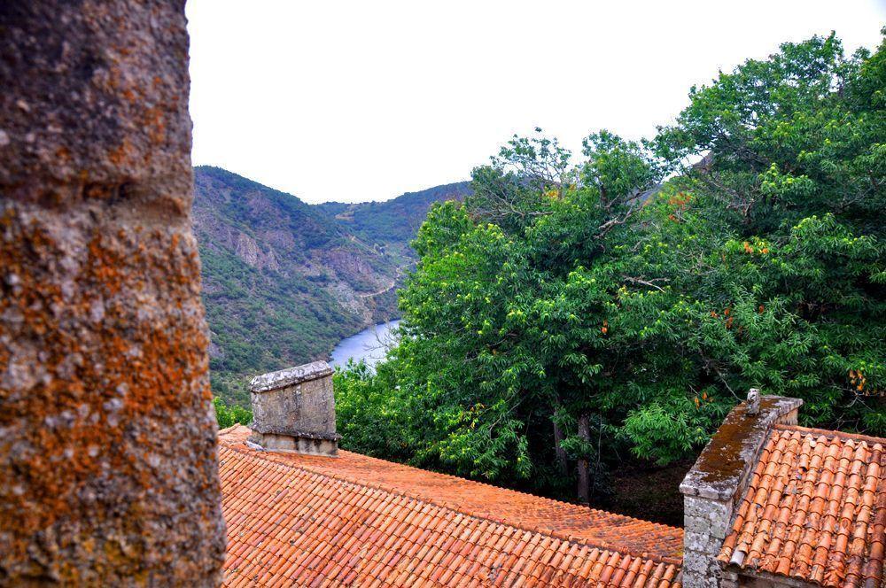 Vista desde la Galeria. Santa Cristina de Ribas de Sil