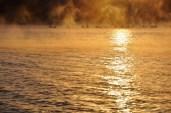 galigallery - dimineatza la pescuit-21
