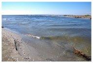 plaja salbatica-08