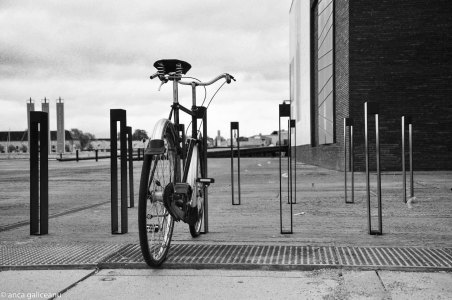 bring-your-bike-10