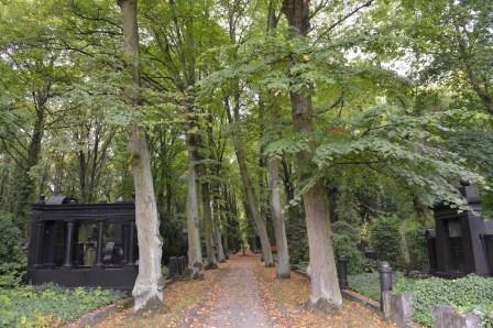 בית הקברות היהודי בווייסנזה