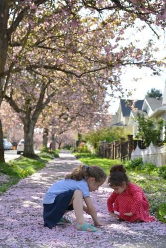 אביב בוונקובר