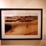 China's Growing Sands Exhibition Extended for One Month