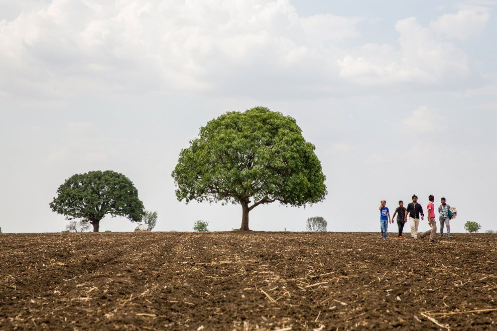 A group of young men walk across barren farmland near the city of Latur.