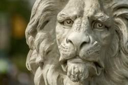 lion statute