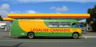 Cannabis_Cannabus-sm marijuana in a motor vehicle