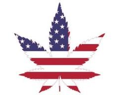 leaf-usa-flag-sm Marijuana Sale Felony crimes in Minnesota