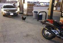 The gas station's chicken
