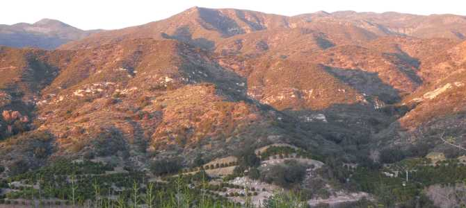 Capturing the Spirit of Ojai