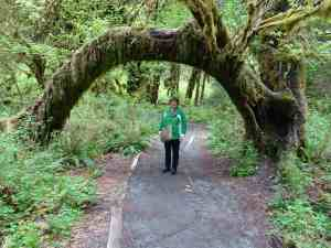 Jo finds a mossy arch.