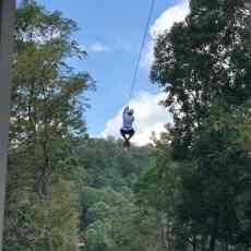 Insiders Guide: Amicalola Falls State Park, Dawsonville, GA