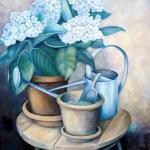 hortensia i urtepotte