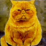 gul kat