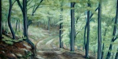 Skovparti ved Herrup