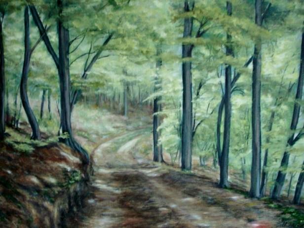 Skovparti ved Herrup str: 47X58 (kan købes)