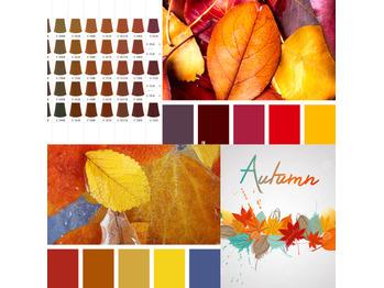 「急な秋?」
