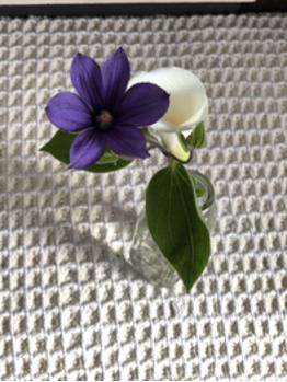 GALLERIA SeRes 【ガレリア セレス】のブログ「お花☆」