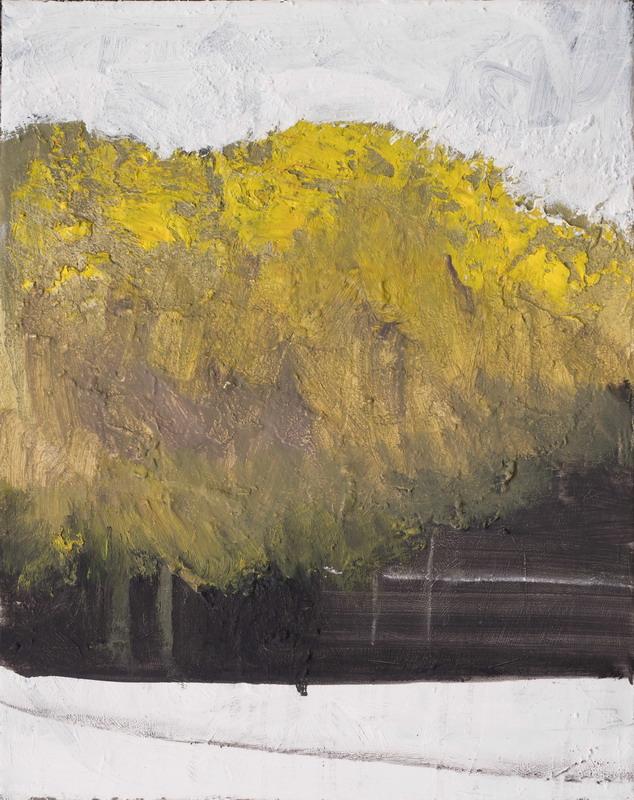 L'albero, olio su tela, 50x40cm