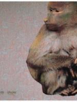 busco-mujer-2008-cm-50-x-50