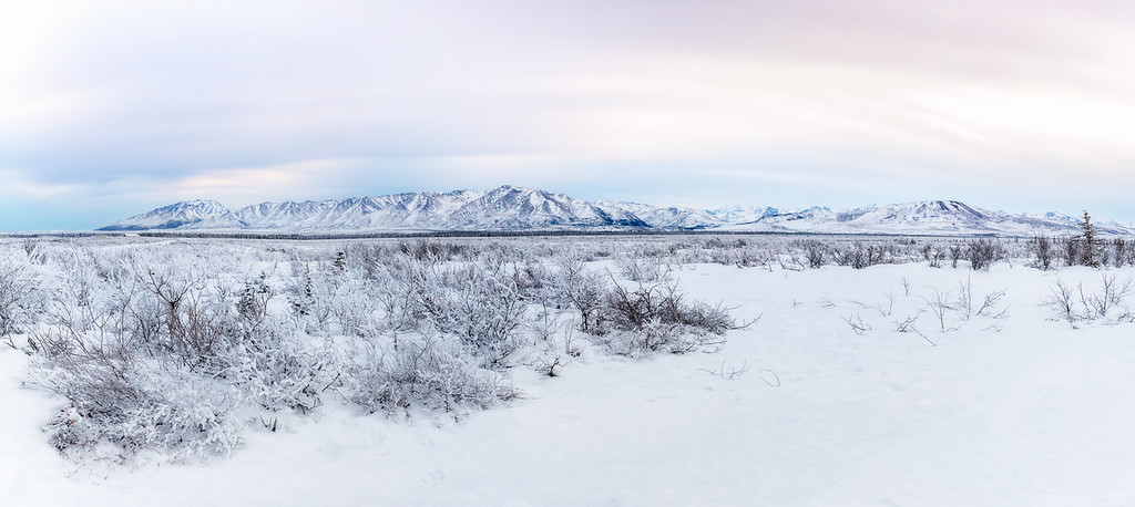 Winter in Fairbanks
