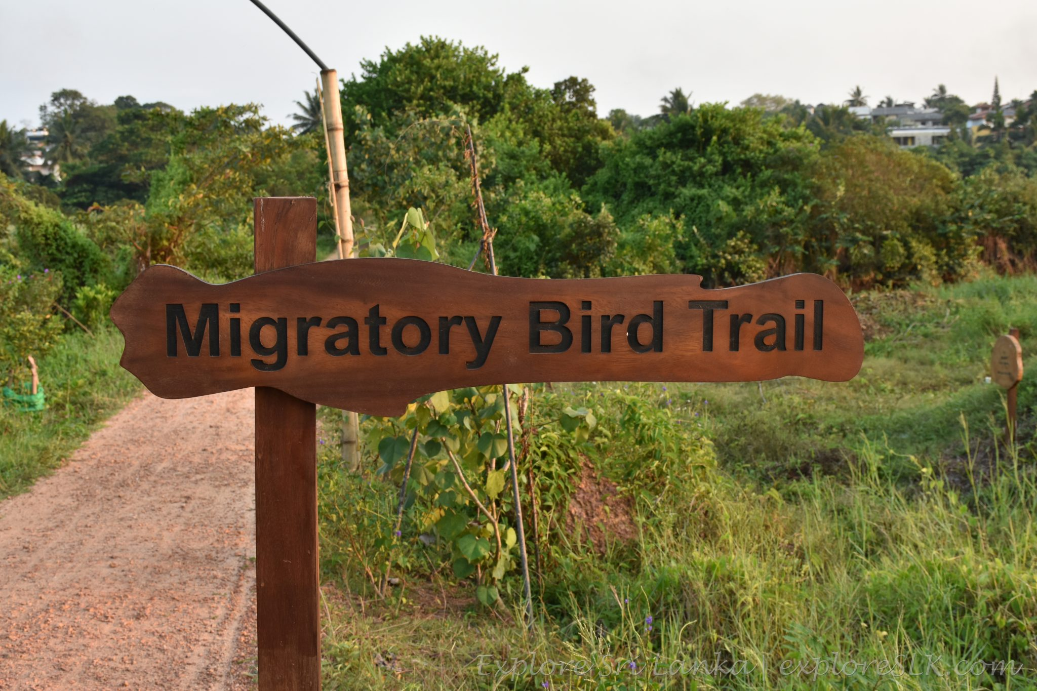 Migratory birds trail - sign board