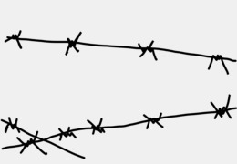 Barbwire PNG & Barbwire Transparent Clipart Free Download