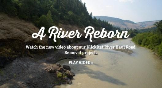 A River Reborn