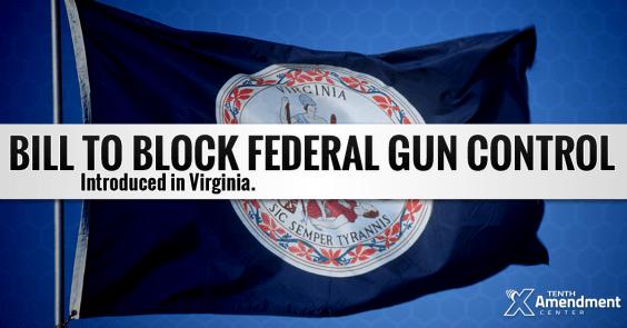 Virginia vs Feds