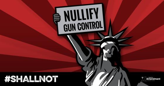 Nullify Gun Control
