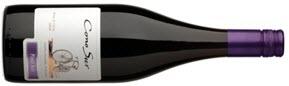 Cono Sur Pinot Noir 2009