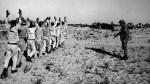 egyptian prisoners of war