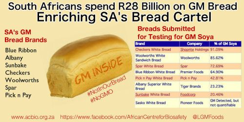 GM bread