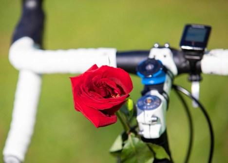 Do It for Dan Memorial Ride bike with rose