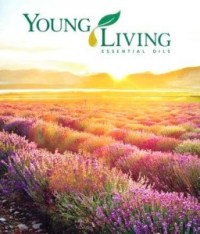 Young Living Essential Oils class being held at Hometown Bicycles