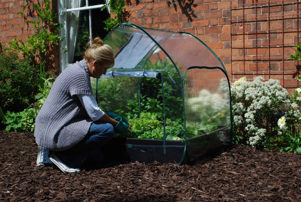 Ready made pop up gopher, squirrel protection for your garden!