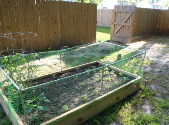 Above ground gopher and squirrel barrier around a raised garden bed