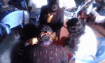 Prayer time in Nyeri