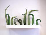 'breathe' by Harriet Schwarzrock – winner of the Waterhouse Natural Science Art Prize 2014 (Sculpture & Objects)