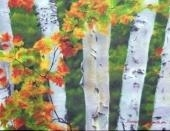 birches 1: autumn showers by bernadette e. kazmarski