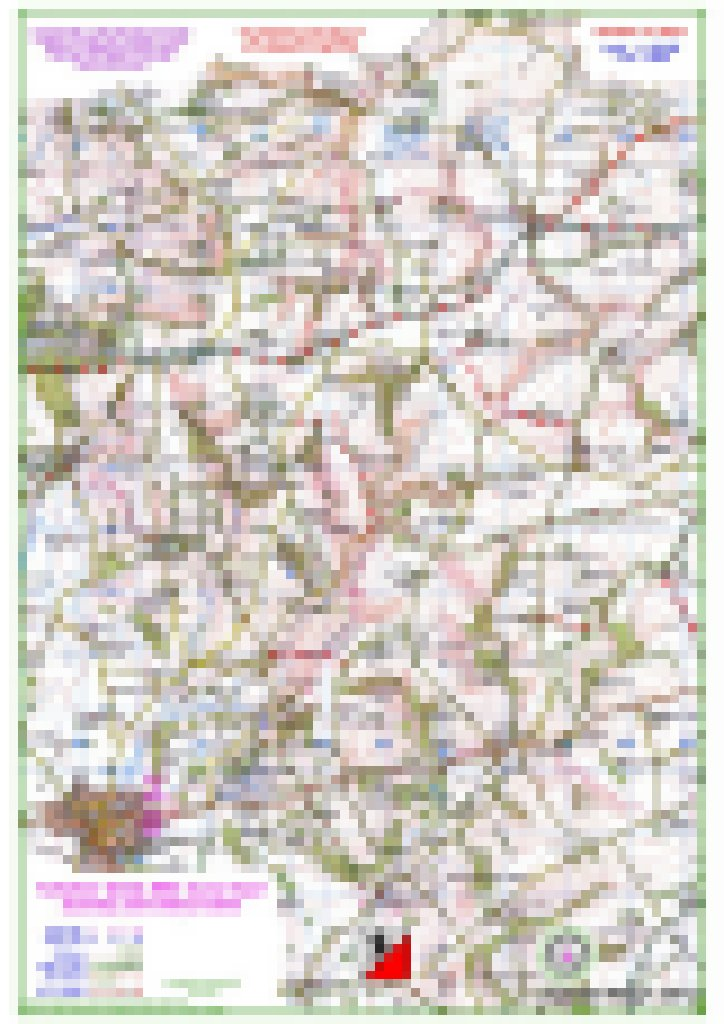 Pixelated Pocklington Map