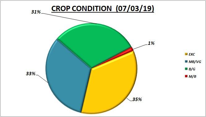Crop condition