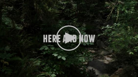 Here and Now - FILM