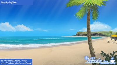 Beach, day